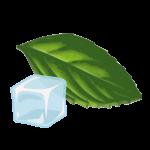 MENTA-FRESH